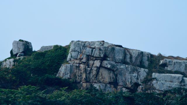 La falaise bretonne
